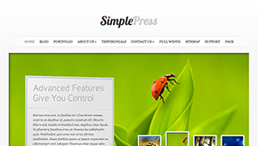 WordPress med tema